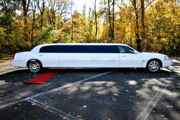 The Amazing Appeal of Limos